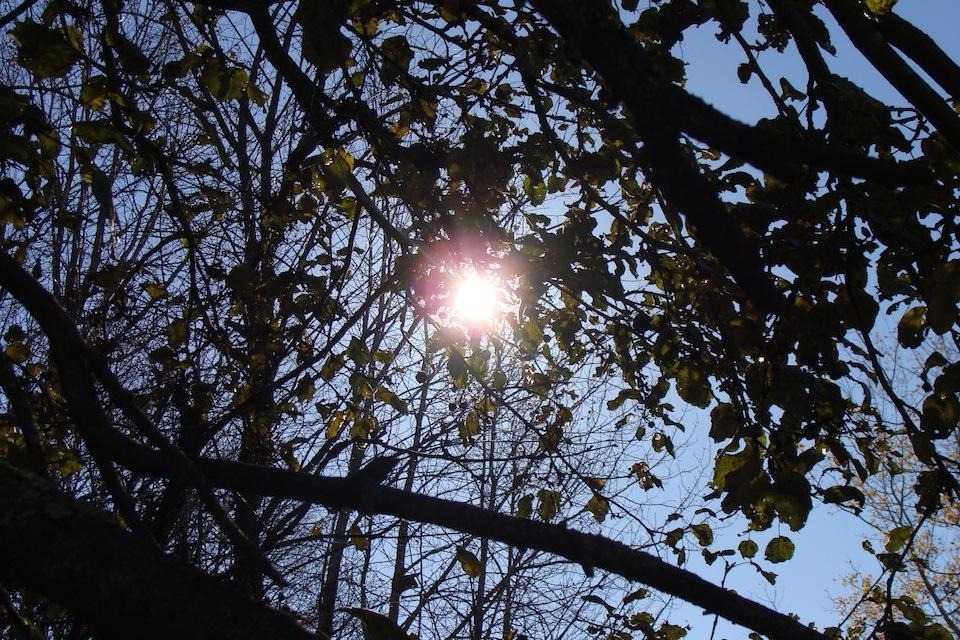 Le coup de soleil les quatre saisons - Coup de soleil dans les yeux ...