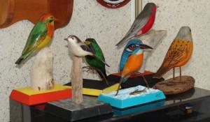oiseaux colores claude lamontagne