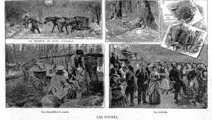 les sucres cyclorama 2 mai 1896