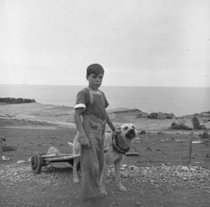 garcon et son chien attele