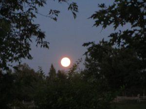 Pleine lune sur Dosquet, photo Anne-Marie S