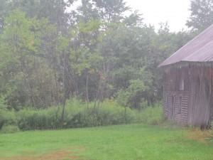 pluie devant letable