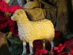 mouton un