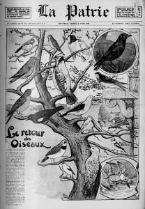 le retour des oiseaux