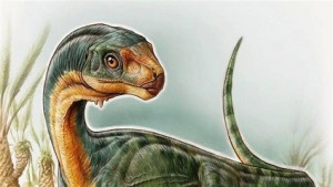 un nouveau dinosaure