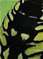 masque deux