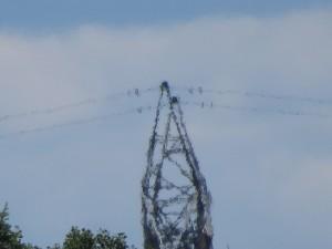 pylone hydro quebec