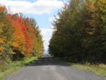 Route automne route Moreau deux