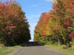 Route automne route Moreau un