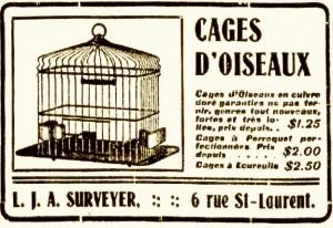 cages oiseaux ecureuil perroquet