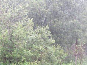 Sous la pluie deux