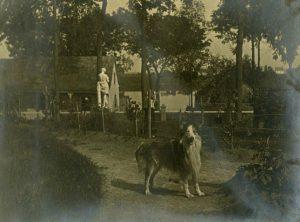 chien devant maison cartier
