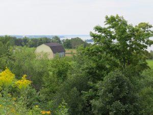 Route Marie-Victorin dans Lotbiniere un