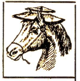 garde-soleil pour les chevaux