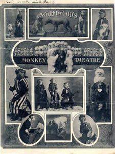 monkey theatre