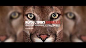 revolutions-animales-karine-lou-matignon