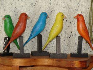 oiseaux-sur-dominos